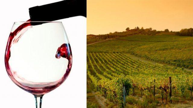 3 bottiglie di vino per chi prenota dal 01 al 15 Giugno 2016