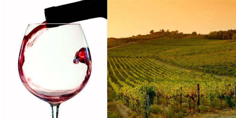 https://agriturismogermagnana.it/wp-content/uploads/2015/03/offerta-vino-settembre.jpg